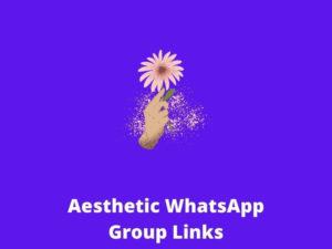 Aesthetic WhatsApp Group Links