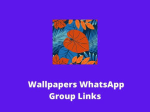 Wallpapers WhatsApp Group Links