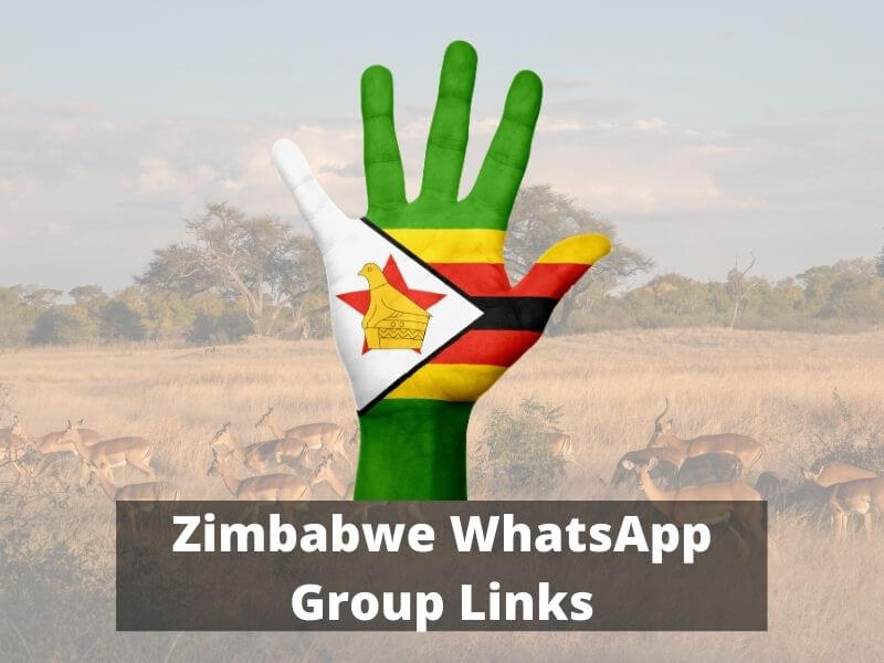 Zimbabwe WhatsApp Group Links